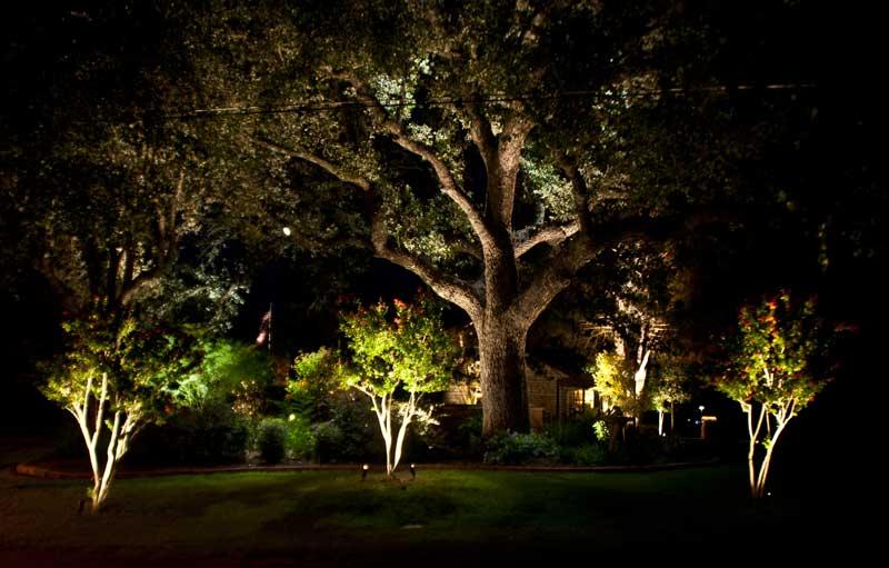 Kingsland landscape lighting